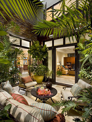 single storey extension plants